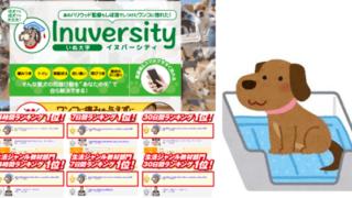 イヌバーシティ評判効果 (1)